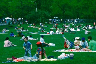 Everyone' s Favorite Place, Sheep's Meadow