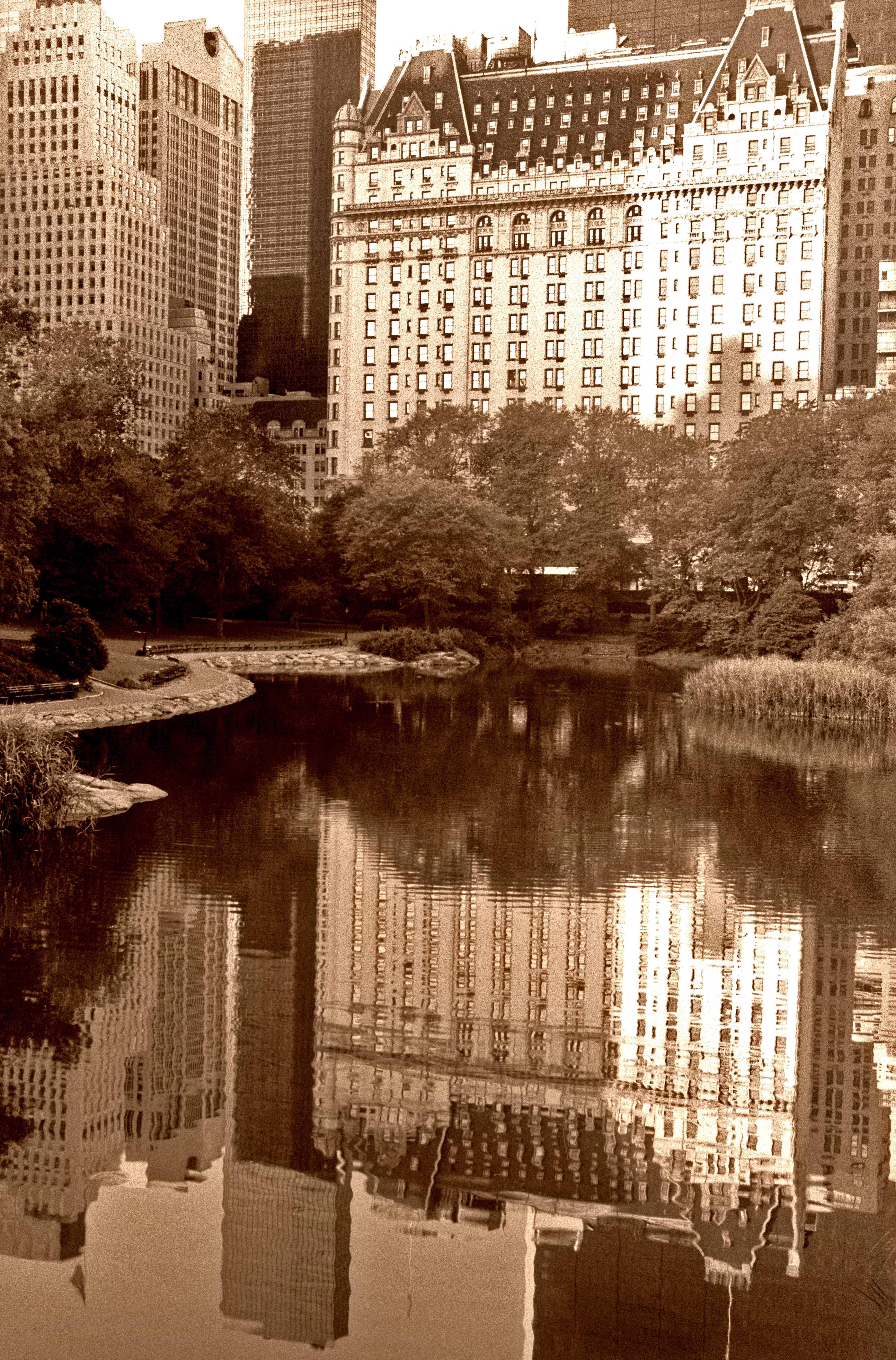 Plaza Hotel Reflection